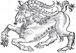Capricorn-bonatti