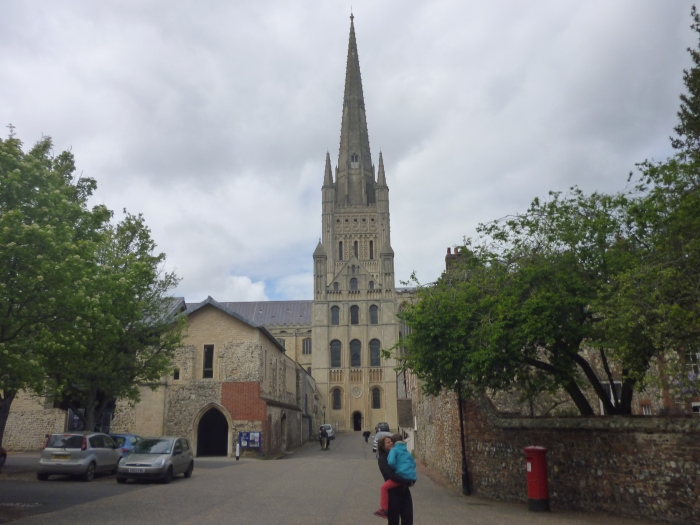 Peregrine roosting spot at Norwich Cathedral