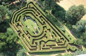 Saffron Walden hedge maze