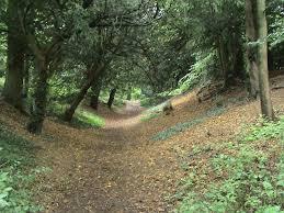 Wandlebury Country Park